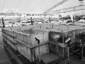 无锡招商城内水产市场系违建 城管:已在拆除